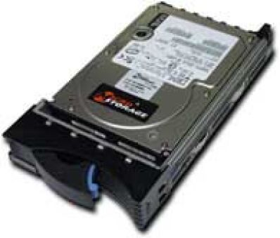 Hotswap 146GB 15000RPM