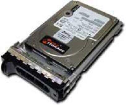 Hotswap 146GB 15000RPM
